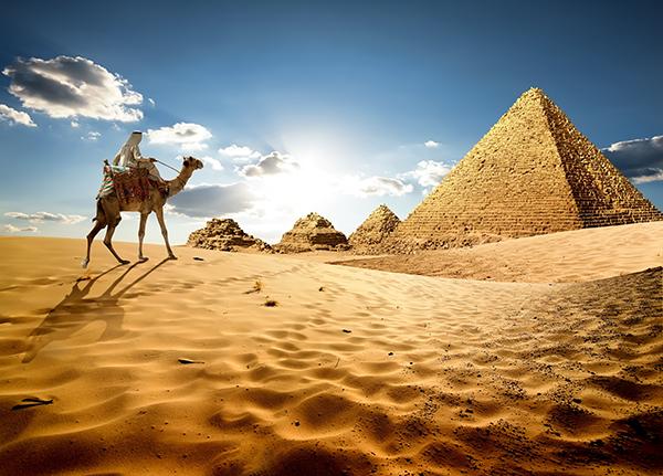 News Article World Travel Tourism Council Wttc